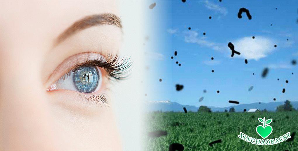 Mắt nhìn thấy chấm đen như ruồi bay – Cẩn trọng để tránh mù lòa!